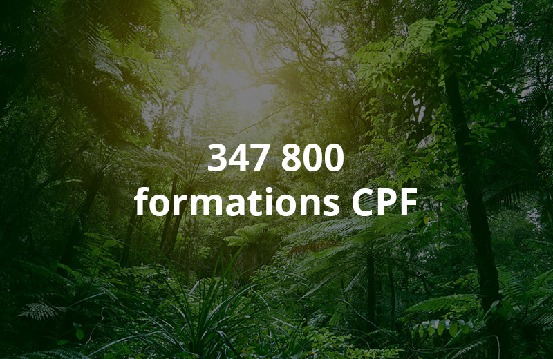 298 000 formations CPF